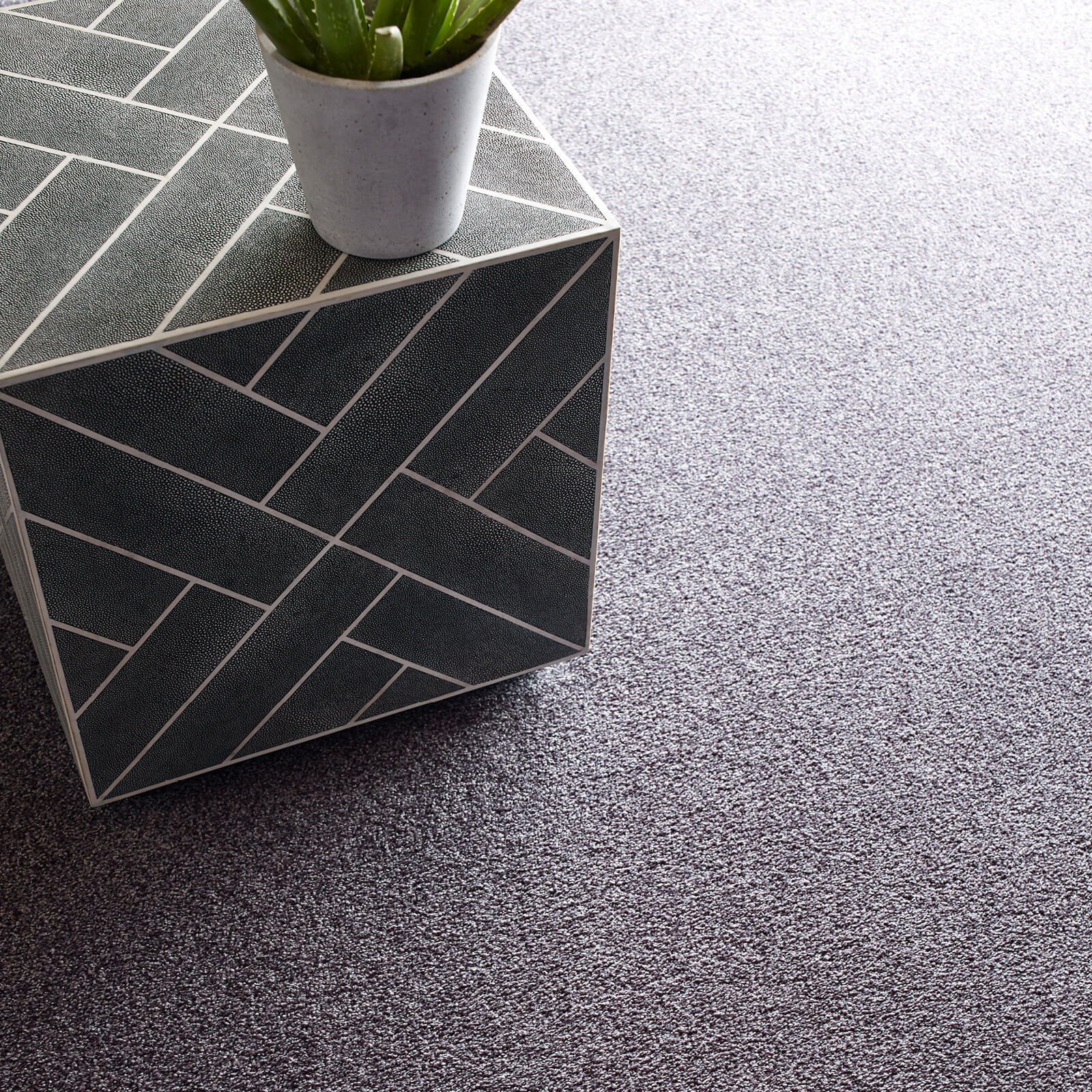 Grey Carpet flooring | All Floors Design Centre