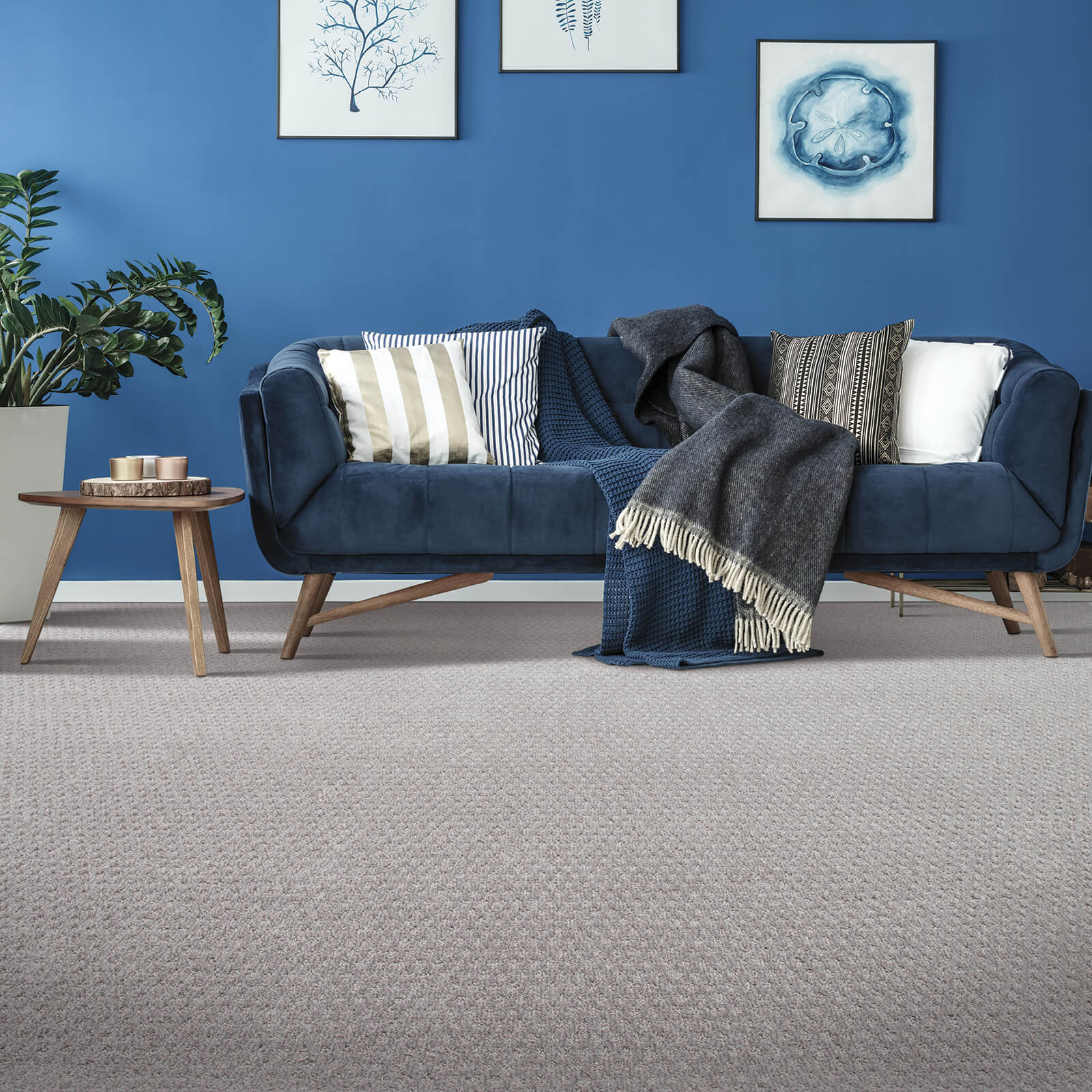 Blue sofa on Carpet | All Floors Design Centre