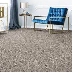Grey Carpet flooring | All Floors Design Centre